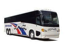 greyhound_bus_usa.jpg